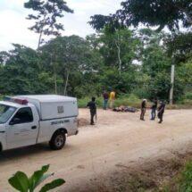 Confirman que eran de Veracruz los ejecutados y los identifican