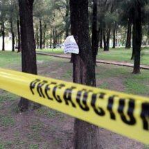 Matan a 5 en límites de Oaxaca con Veracruz