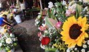 En el mercado de flores, esperan buenas ventas por el Día de las Madres