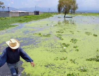 Conagua mantiene operativos en municipios cercanos al Río Lerma y en Ecatepec